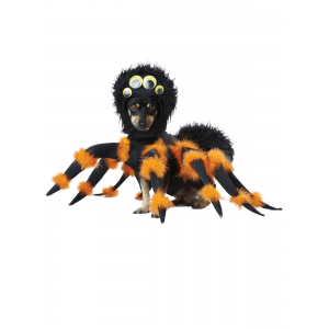 Buy Spider Pup Costume for Pets For $40.24 At Ebay.com