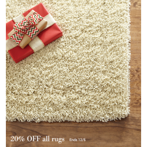 Now Thru Monday 20% Off on All Rugs At Homedecorators.com
