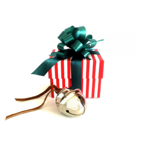 Get First Gift of Christmas Sleigh Bell Gift Set For  $29.99 At LivingSocial.com