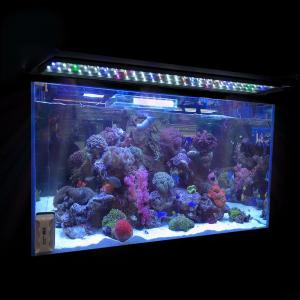 Grab Multi-Color Aquarium Light Full Spec Plant Fish Tank For $26.90 At Ebay.com