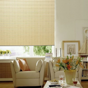 Get Premier Pleated Shade For $63.99 At Blinds.com