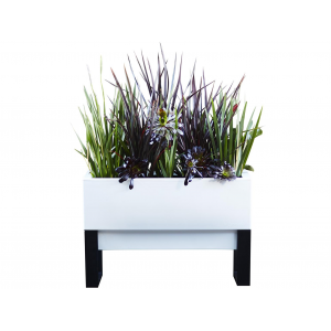 Urban Garden Self Watering Planter at $200.