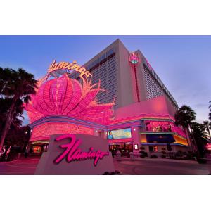 Flamingo Las Vegas At $45.52