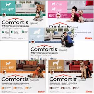 Comfortis Starting At $80.99