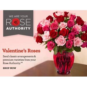 Buy Valentine's Day Roses Starting At $39
