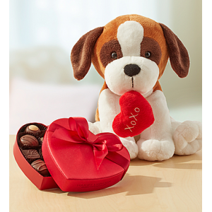 Get Sweet Puppy with Chocolate At $29.99