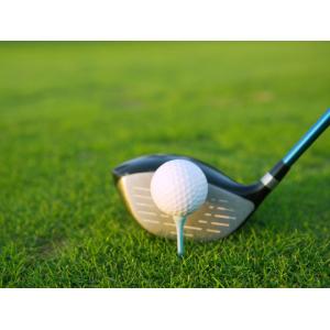 Grab Eaglequest Golf Dome Driving Range At $59.99