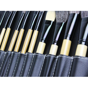 24-Piece Professional Makeup Brush Kit W/ Carrying Case At $19.99 (living social)