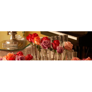 Champagne Tour at The Mansion On O Street At $18(living Social)