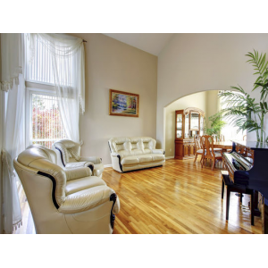 Maid New Cleaning Service $60(living social)