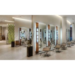 Up to 38% Off Aveda Sensory Ritual Massage Facial or Express Mani-Pedi at Asha SalonSpa