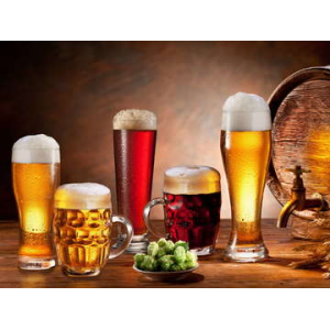 Master Beer Brewing Course At $29.99