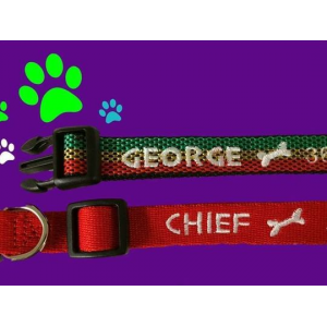 Get Personalized and Embroidered Dog Collar At  $6.99(LivingSocial.com)